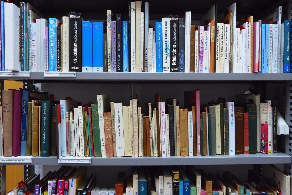 Bibliothek Rosenmuseum Steinfurth